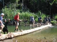 Trekkers crossing the Brown River on Day 5 of the Kokoda Trail |  <i>Rachael Davis</i>