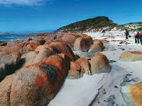 The Bay of Fires in Tasmania's north east |  <i>Steve Trudgeon</i>